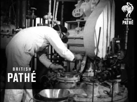 Manufacture Of Antrycide - New Drug To Combat Cattle Disease And Tsetse Fly (1949)