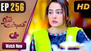 Pakistani Drama | Kambakht Tanno - Episode 256 | Aplus ᴴᴰ Dramas | Tanvir Jamal, Sadaf Ashaan