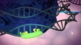 Epigenetische Abschaltung von Genen - study project 3D Graphics
