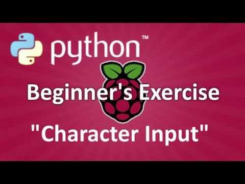 Python Beginner's Exercise : Character Input