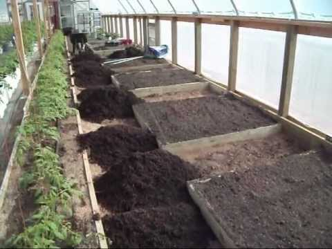 Greenhouse Raised Bed Preparation