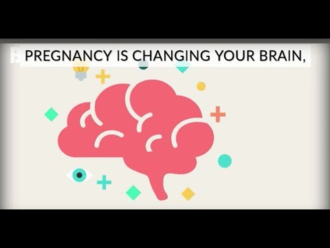 How Pregnancy Changes Your Brain