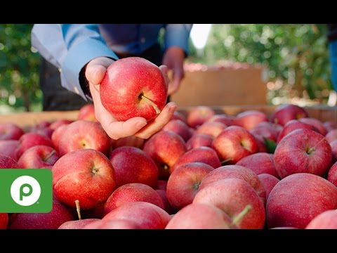 October | At Season's Peak: Apples from the Columbia River Valley