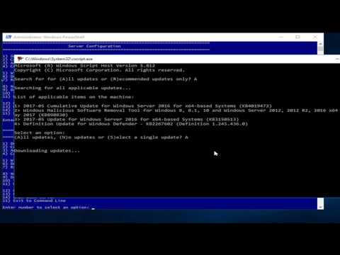 Installing Docker onto a Windows Server 2016 Datacenter Server