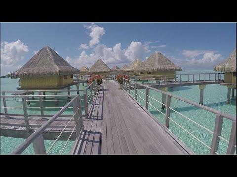 Honeymoon   Moorea and Bora Bora