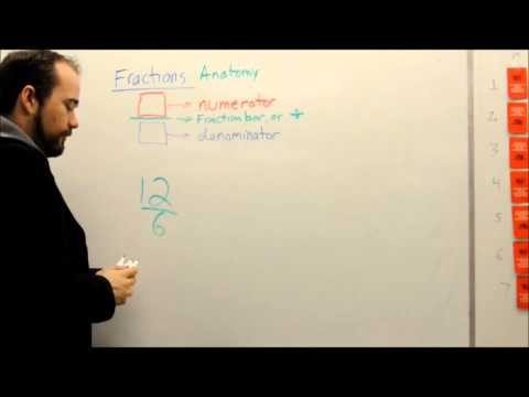 Fractions 03: Numerator and Denominator