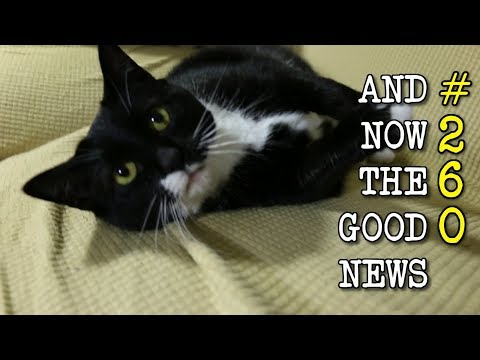 And Now the Good News #260: Antibody Attacks 99% of HIV Strains!
