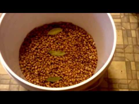 How To Store Pinto Beans Long Term~Food Storage Part 3~