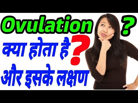 What is Ovulation Periods | Fertile Days Kya Hota Hai | Ovulation Date Kya Hai Hindi | Female Eggs