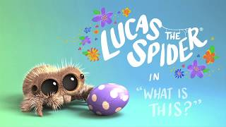 Download Lucas The Spider – What Is This? Video