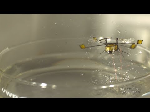 Air-Water Robot Uses Explosive Launch