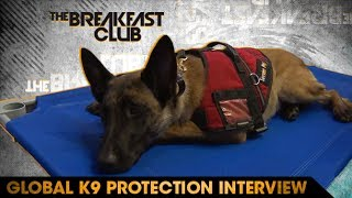 Global K9 Protection Founder Courtney Graham-Robbins Brings Envy His New Guard Dog