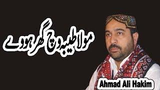 Mola Taiba Ich Ghar Howe | Beautiful Natt | Ahmed Ali Hakim