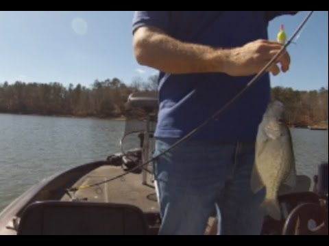 Best Times To Crappie Fish Late Winter, Early Spring. Arkansas Crappie Fishing Feb 2017