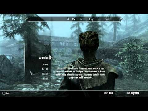 TES:Skyrim - How to edit/rename your character