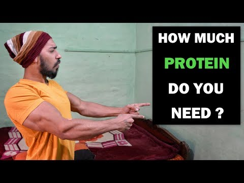 How Much Protein Do You Need Per Day - Fat Lose/Muscle Gain | Bodybuilding Tips