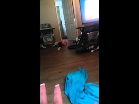 Temper tantrums of a 10 month old