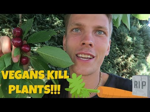 Vegans are killing plants! Stop the Violence!