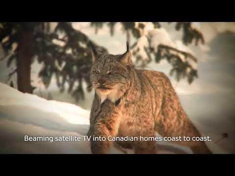 Shaw Direct Satellite TV: Coast to Coast: Whitehorse I Commercials I Shaw Direct