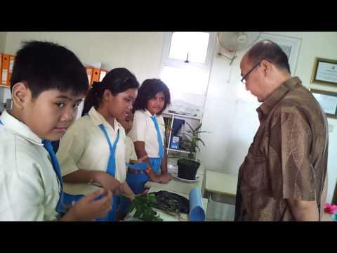 Science Exhibition grade 4