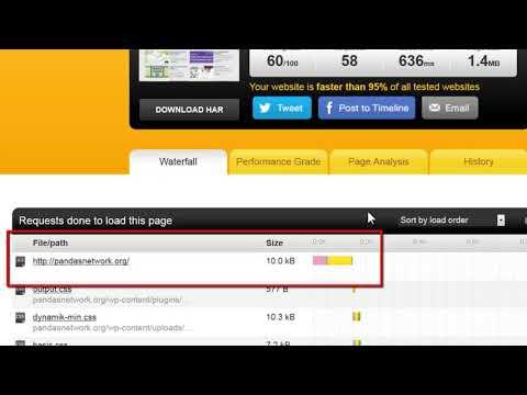 Choosing a Domain Registrar & Hosting Company