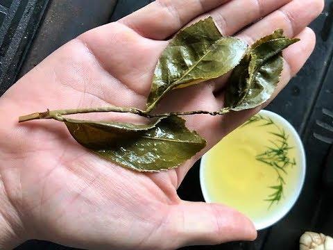 Wow! High Mountain Oolong Tea