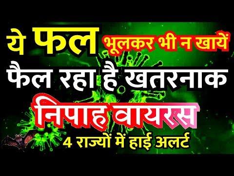 निपाह वायरस इन 3 फलों से फैल रहा है भूलकर भी न खाएं | Nipah virus Alert PM Modi Govt Latest News