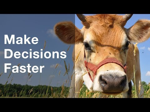 Make Decisions Faster