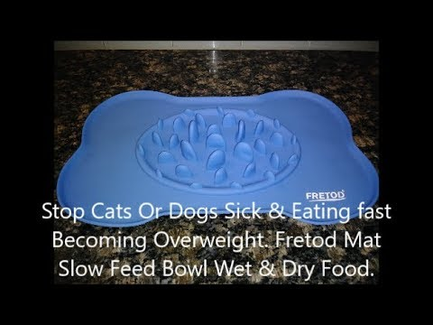 Help Cats & Dogs From Throwing Up Food Eating To Fast Or Overweight. Fretod Mat With Slow Feed Bowl.