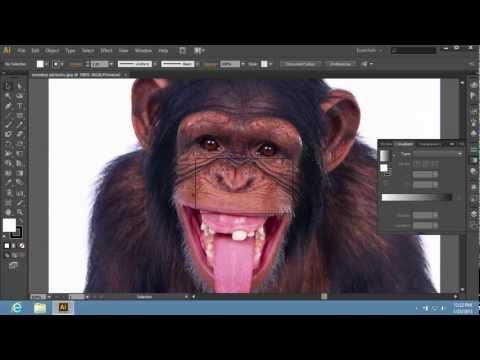 How to Resize Adobe Illustrator CS6 Image