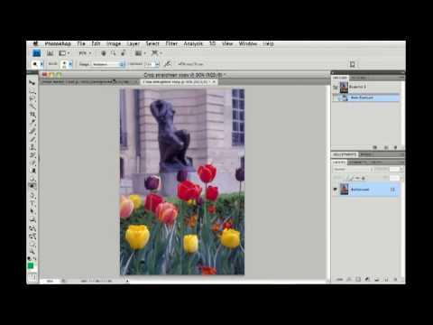 Photoshop CS4: Auto image settings