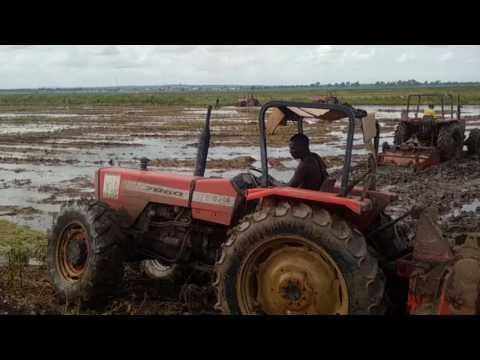 Nigeria Rice - small tractors
