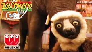 Zoboomafoo | Full Episode: Elephant Trunk Trivia | Animals For Kids