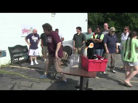 Playrific Ice Bucket Challenge - Short