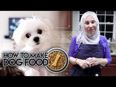 How to Make Healthy DOG FOOD!