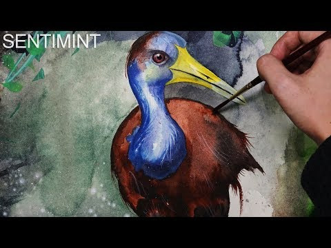 [Watercolor] Grey-Necked Wood Rail
