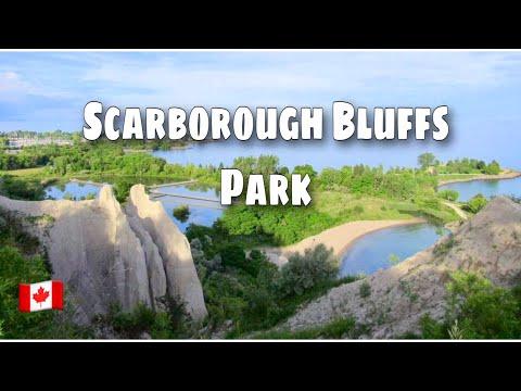 Scarborough Bluffs Park Toronto, Ontario