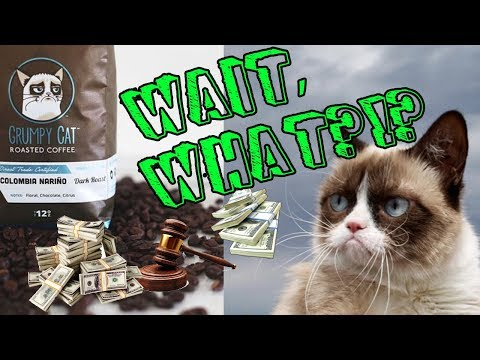 Grumpy Cat Wins HOW MUCH in Copyright Lawsuit??