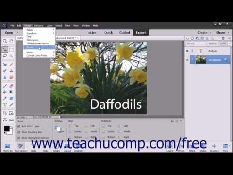 Photoshop Elements 15 Tutorial Image Size & Resolution Settings Adobe Training