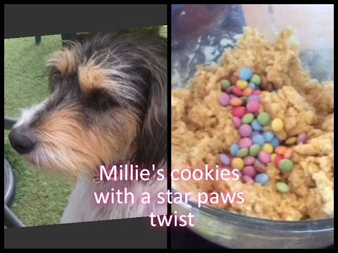 making Millie's cookies with a star paws twist