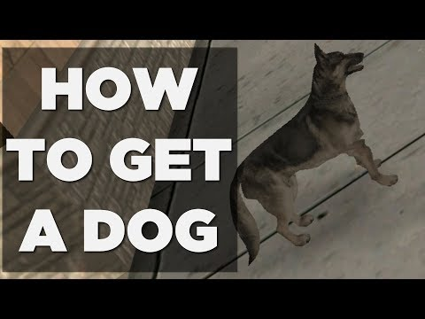 HOW TO GET A DOG IN GTA SAN ANDREAS