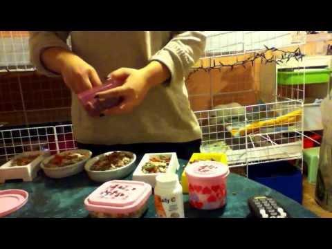How I Make My Guinea Pigs Food