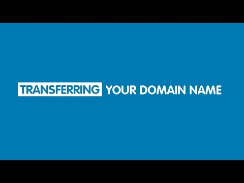 How to check the status of your domain transfer | 123-reg
