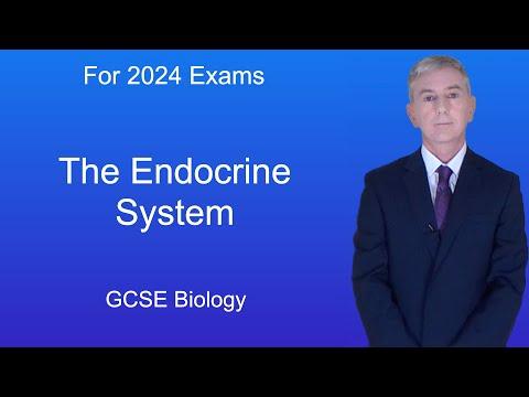 GCSE Science Biology (9-1) The Endocrine System
