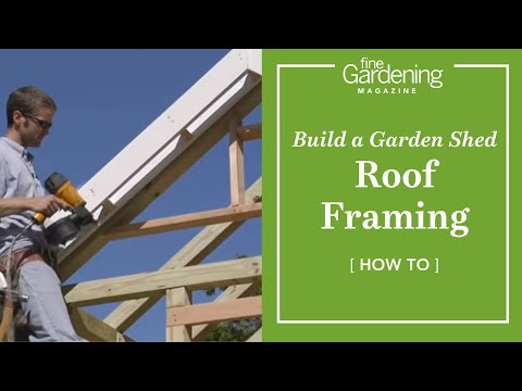Build a Garden Shed - Roof Framing