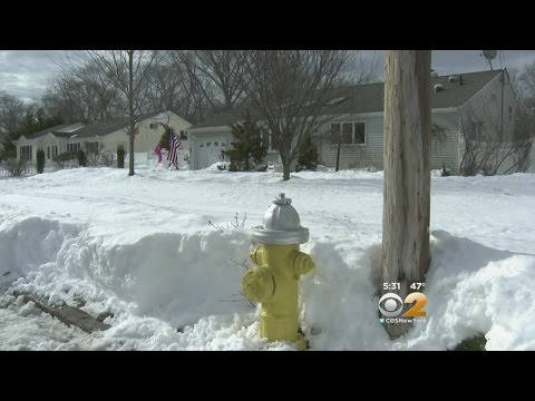 Clearing Hydrant Saves Home