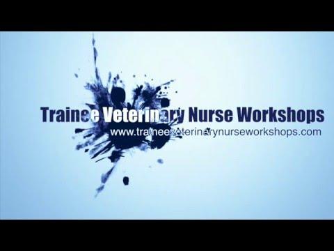 Trainee Veterinary Nurse Workshops