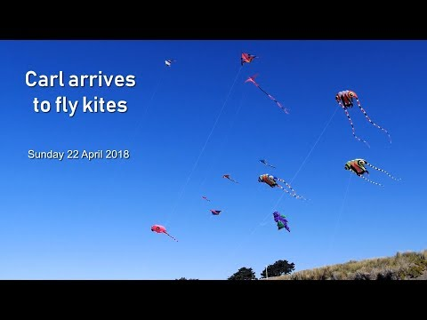 Carl arrives to fly kites