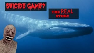 Blue Whale Game Facts- The true Story