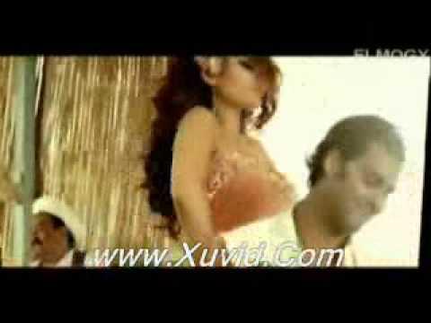 Xxx Mp4 Haifa Wahbi Ragab Rajab 3gp Sex